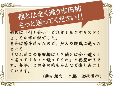 他とは全く違う市田柿 もっと送ってください!!